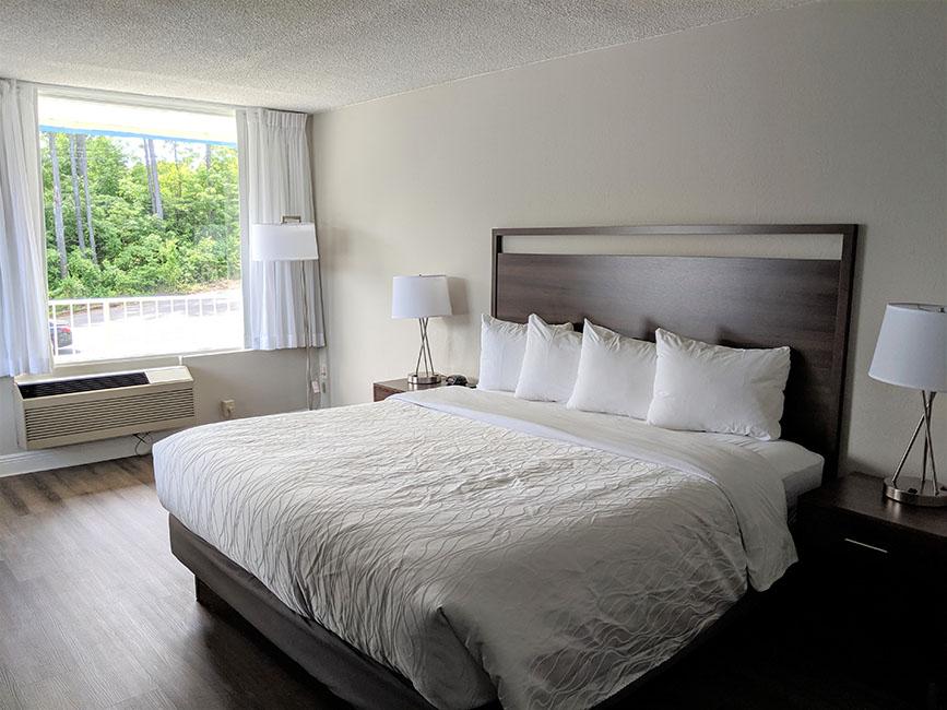 King Bed Lake Room